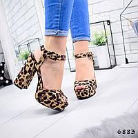 Модные женские босоножки леопардовые Pretta лео