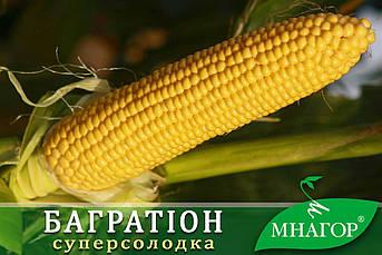 Цукрова кукурудза Багратіон F1, Sh2-тип, 1000 насінин на 1.5 сотки, 76-78 днів, раньостиглий