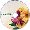 LS-MEDIA DVD+R 4.7Gb 16x bulk 50 ГЕРБЕРЫ, фото 2