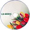 LS-MEDIA DVD+R 4.7Gb 16x bulk 50 ТЮЛЬПАН, фото 2