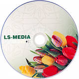LS-MEDIA DVD+R 4.7Gb 16x bulk 50 ТЮЛЬПАН, фото 2