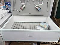 Инкубатор бытовой Курочка Ряба ИБ-120 автоматический переворот 120 яиц