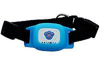 Gps ошейник для кошек Myox MPT-03CU голубой - 141015