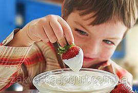 Закваска «Домашний бифидойогурт» (Италия) на 3 литра молока