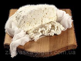 ЗАКВАСКА Домашний ТВОРОЖОК Детский (сырковая масса) (Италия) на 3 литра молока
