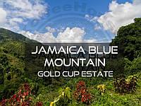 Кофе свежеобжаренный Арабика Ямайка Blue Mountain, 100г