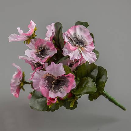 Анютины глазки 25 см (106F/pink), фото 2