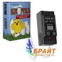 Терморегулятор для инкубатора электронный Квочка