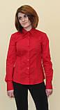 Красная женская блуза, фото 2