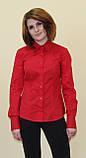 Красная женская блуза, фото 4
