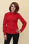 Красная женская блуза, фото 6