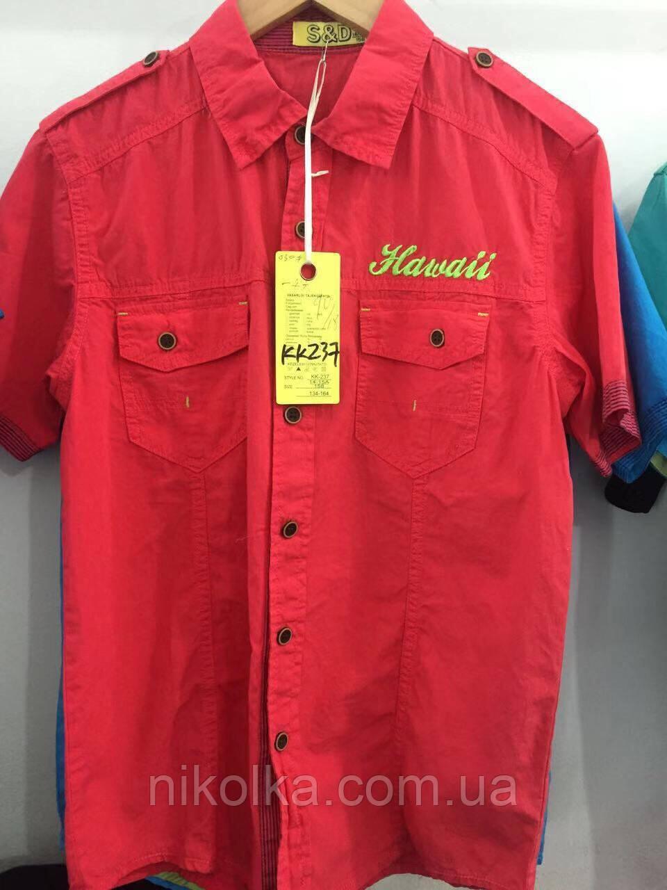Рубашки для мальчиков оптом, S&D, 134-164 рр., арт. KK-237