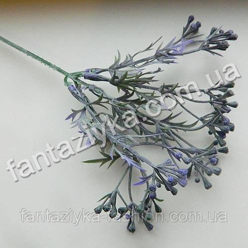 Декоративная веточка мимозы остролистная с фиолетовыми ягодами