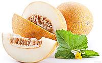 Семена дыни купить, от производителя, сорта,цена.