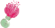 MadamPodari studio flowers & gifts