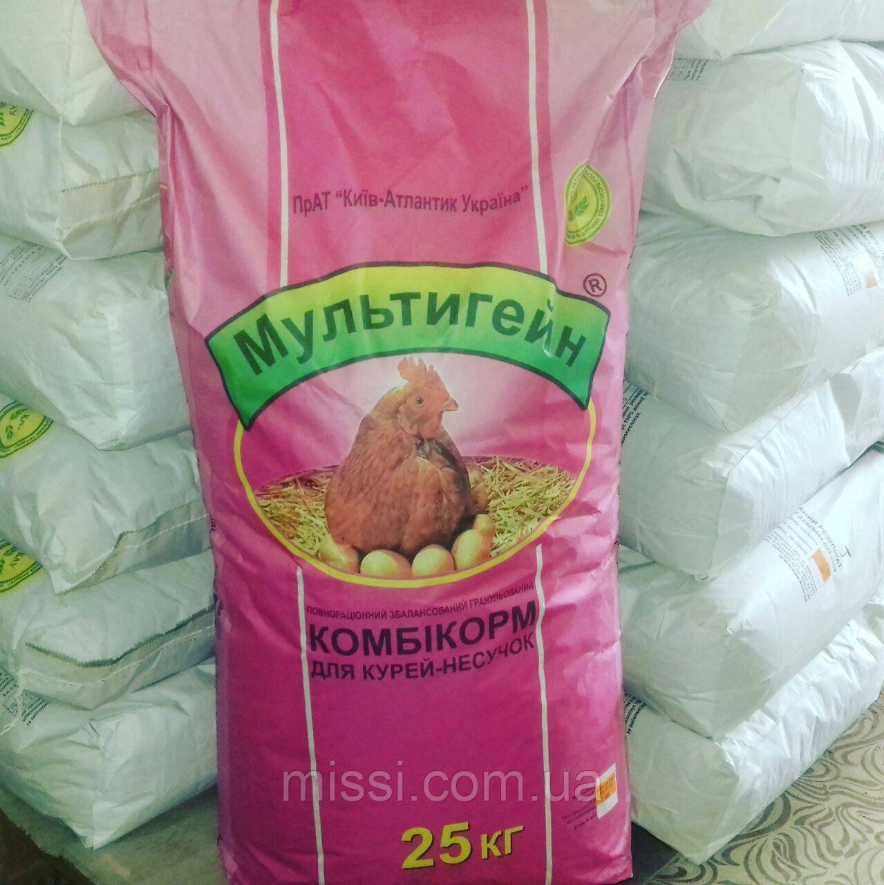 Мультигейн Комбікорм для курки несучки (25 кг)