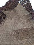 Лапа крокодила коричнева глянцева, фото 6