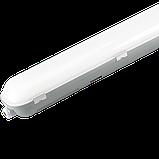 Светильник влагозащищенный светодиодный Lumen ЛЕД СИГМА LW-35Вт 4000K L1200 IP65, фото 2