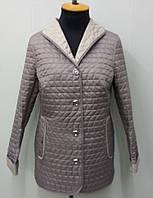 Куртка женскаядемисезонная - П-72- цвет-пудра
