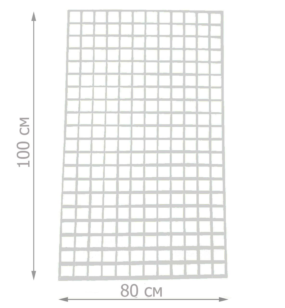 Торгова сітка сітка 100/80см комірка 5/5см