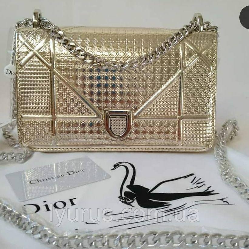 ffd7c0b65f1e Женская сумка в стиле Dior Diorama Silver Large - Интернет магазин LyuRus в  Полтаве