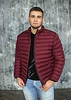 Мужская демисезонная куртка без капюшона