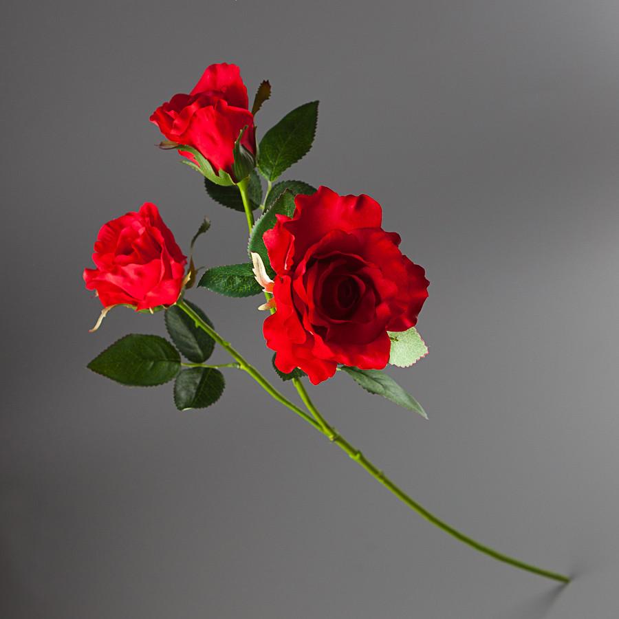 Роза 83 см (009FR-24/red)