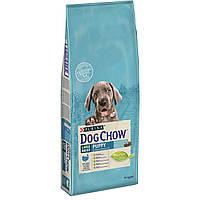 Dog Chow Puppy Large Breed 14 кг с индейкой для щенков крупных пород до 2 лет