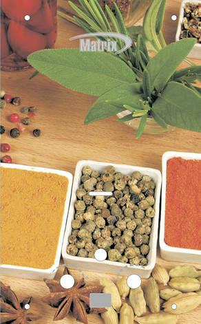 Газ. колонка MATRIX Spice (Спеції), фото 2