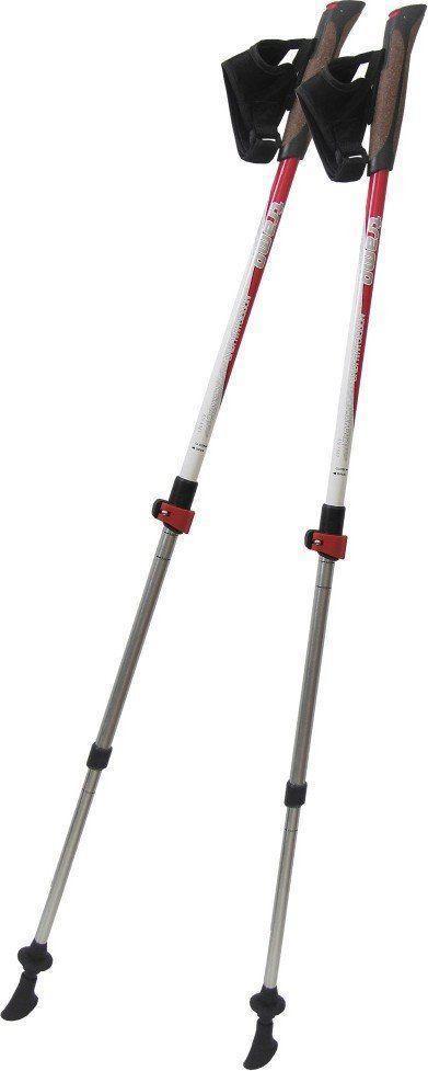 Палки для скандинавской ходьбы Tramp Compact пара TRR-004