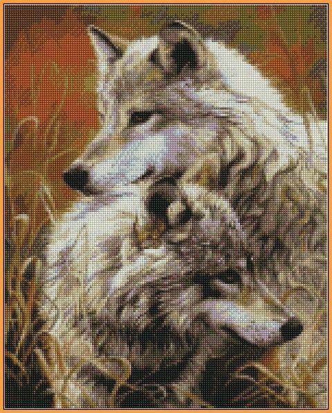 Алмазная вышивка  40×50 см. Степные волки Художник Люси Билодо (ST-034)