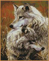 Алмазная вышивка  40×50 см. Степные волки Художник Люси Билодо (ST-034), фото 1