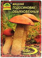Мицелий гриба Подосиновик Обыкновенный, 10 г
