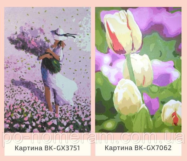 Картина по номерам без коробки тюльпаны Брашми