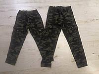Котоновые брюки джоггеры для мальчиков  Seagull 116-146 p.p., фото 1