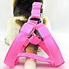Светящиеся светодиодная шлейка для собак и кошек , фото 3