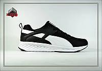 Мужские кроссовки Puma Trinomic, Спортивная обувь, Легкая обувь