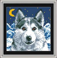 Набор для рисования камнями квадратными «Лунный свет» Dream Art 30155 (18 х 18 см) на холсте