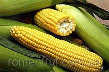 """Семена сладкой кукурузы F1 """"Мегатон"""" 1000 шт"""