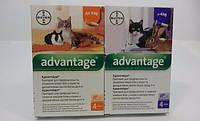 Advantage для котов
