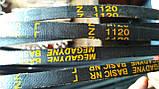 Приводний клиновий ремінь Z(0)-1120 Megadyne, фото 4