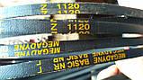 Приводний клиновий ремінь Z(0)-1120 Megadyne, фото 3