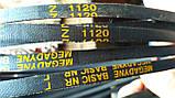 Приводний клиновий ремінь Z(0)-1120 Megadyne, фото 5