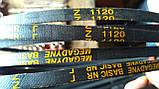 Приводний клиновий ремінь Z(0)-1120 Megadyne, фото 7