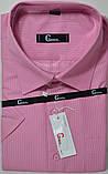 Мужская рубашка c коротким рукавом BENDU (размеры 40.41.44.45.46), фото 2