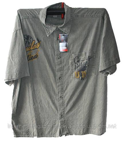 Мужская рубашка из льна батал