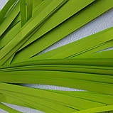 Салатовая бумага для бумажного шоу, фото 2