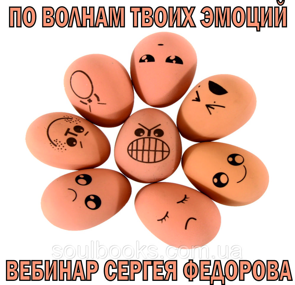 """Вебинар """"По волнам твоих эмоций"""". Сергей Федоров"""