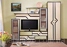 Гостиная Дельта со шкафом 2000х2350х360мм   Мастер Форм, фото 2