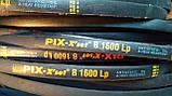 Приводной клиновой ремень B(Б)-1600 PIX, фото 10